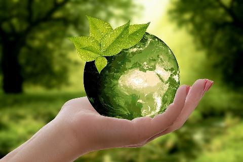 Maturità sostenibile